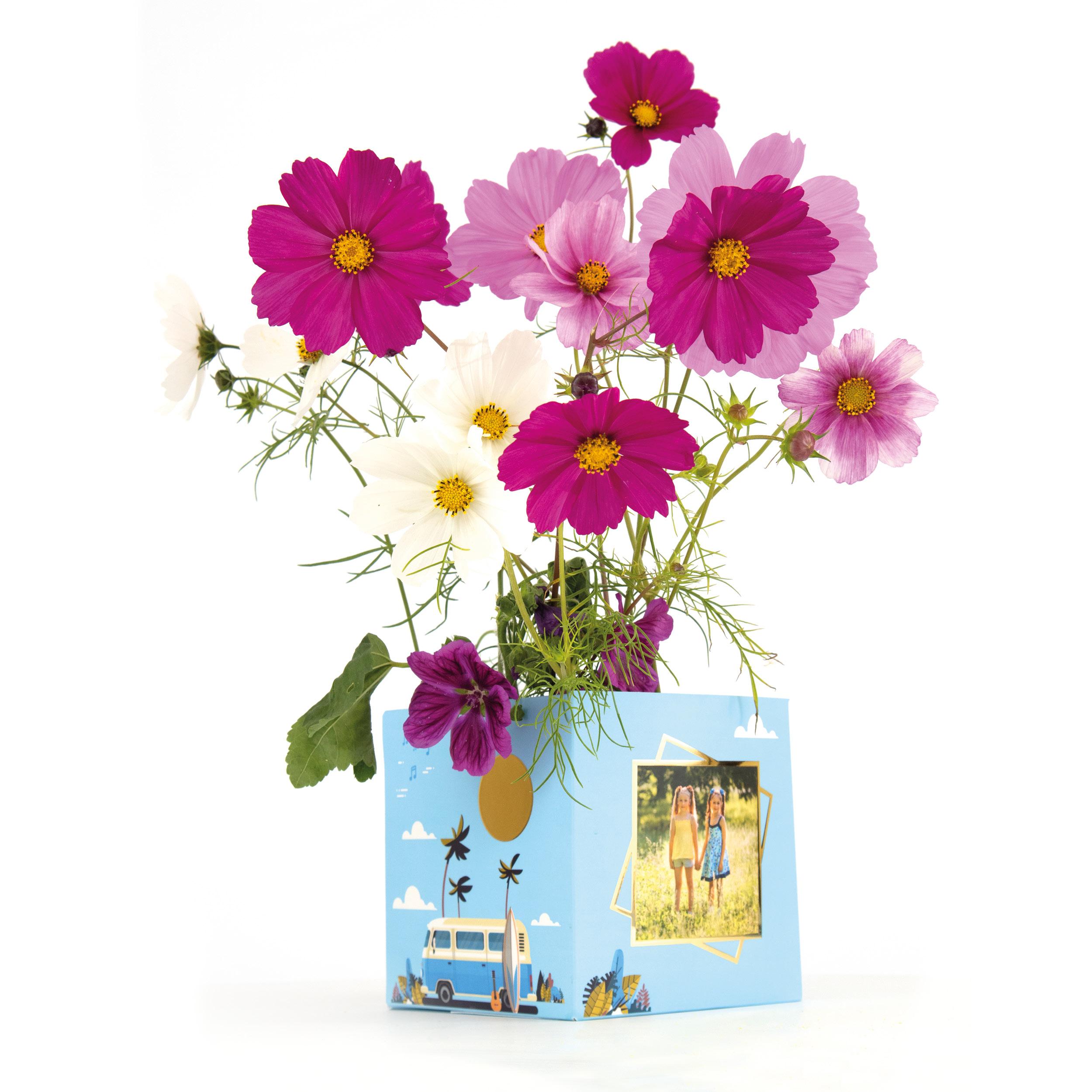 Voeg een paar bloembollen toe aan je verjaardagscadeau en tover de BonBox om tot een klein bloempotje. Zeer origineel!